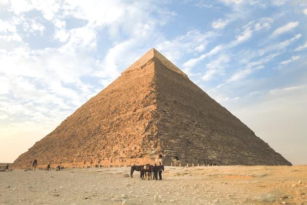 吃素-失智症-金字塔