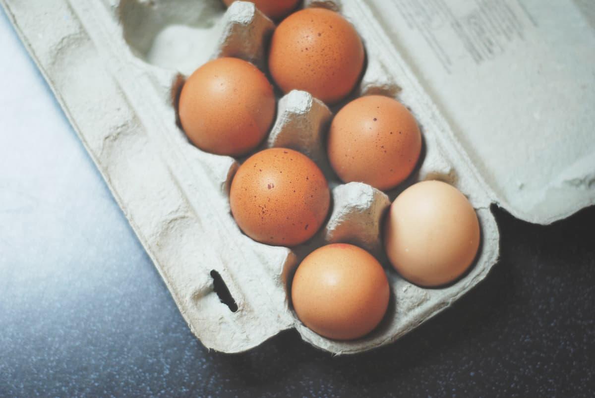 雞蛋-營養食物