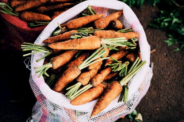 綠茶鐵-胡蘿蔔-紅蘿蔔-胡蘿蔔素