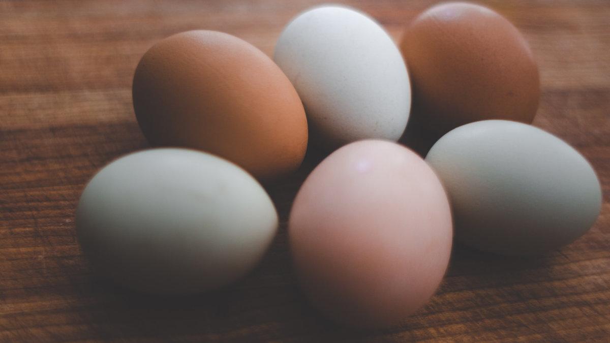 蛋殼-顏色-蛋黃-營養價值-wp
