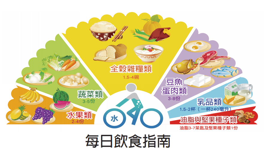 每日飲食指南-元宵節-支鏈澱粉