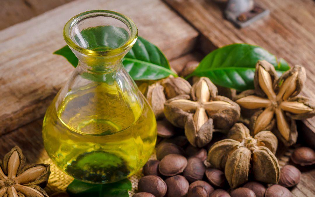來自秘魯的印加果油 素食者補充 Omega-3 的新選擇