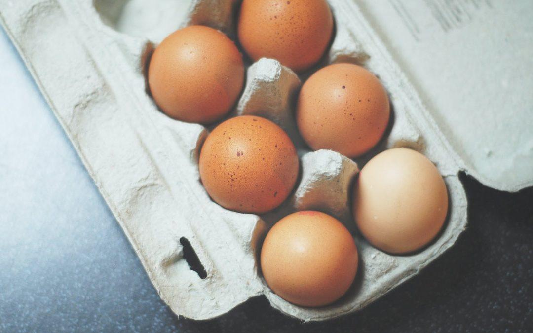 土雞蛋比白雞蛋營養更多 這是真的嗎?