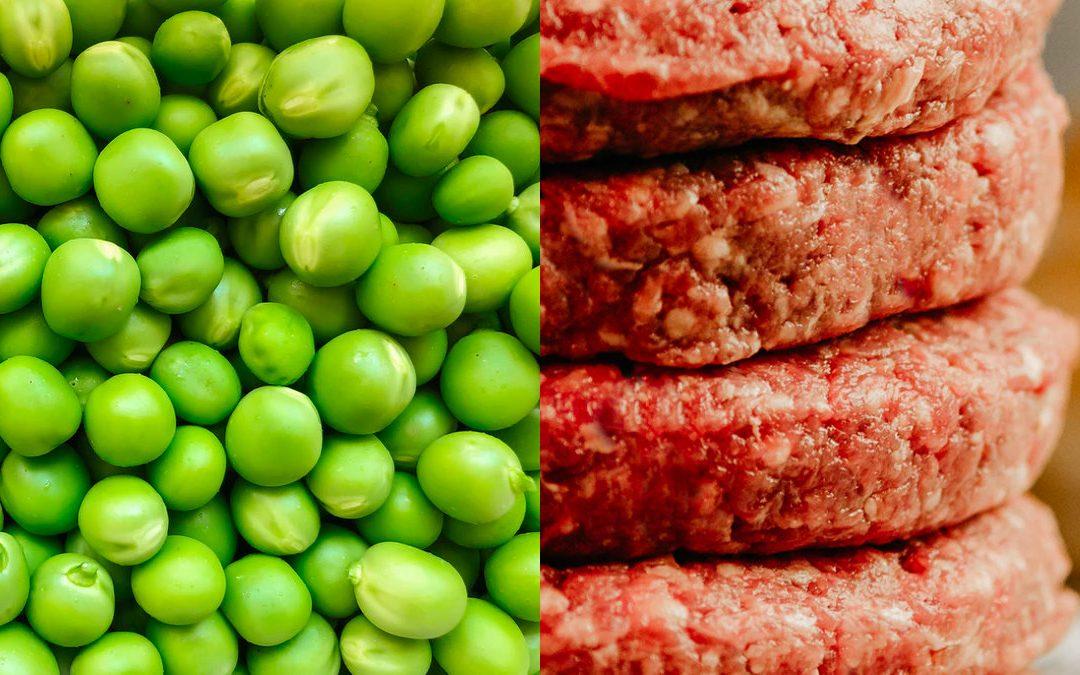 週一無肉日就吃植物肉 是吃肉也是吃素!