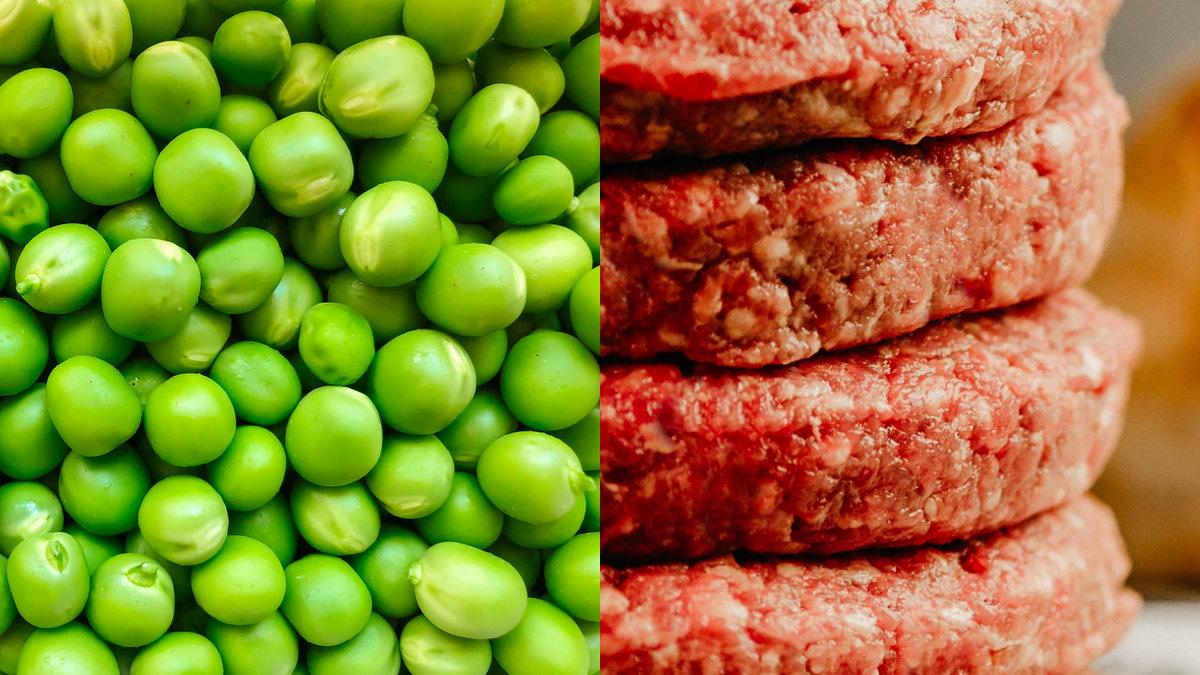 替代肉-植物肉